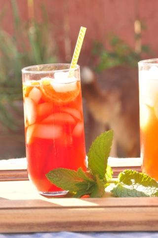 iced tea showdown -dailyration.net